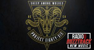 Project 86 – Sheep Among Wolves
