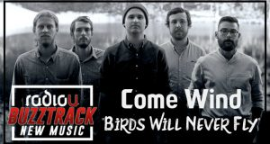 Come Wind – Birds Will Never Fly