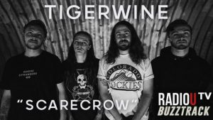 Tigerwine - Scarecrow